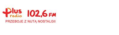 ds radio plus