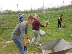 zdjęcie przedstawia wolontariuszy pomagających w pracach ogrodowych